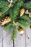 Ramos de árvore do Natal com bolas e o abeto-cone dourados Fotos de Stock
