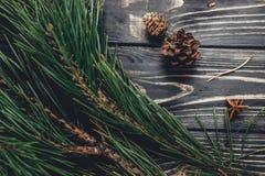 Ramos de árvore do Natal com cones do pinho e anis na parte traseira rústica Imagens de Stock Royalty Free