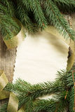 Ramos de árvore do Natal com o cartão de papel vazio Imagens de Stock Royalty Free