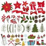 Ramos de árvore do Natal, flores, grupo da decoração ilustração do vetor