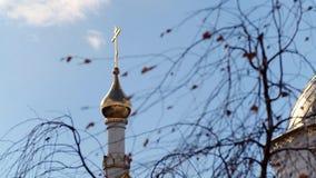 Ramos de árvore no fundo de Golden Dome da igreja no outono Metragem conservada em estoque Golden Dome da igreja cristã ostenta vídeos de arquivo