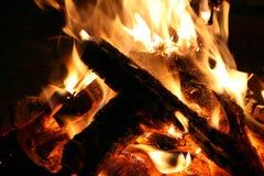 Ramos de ?rvore que queimam-se em uma fogueira na terra A fogueira dos ramos queima-se na natureza imagens de stock