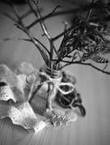 Ramos de árvore secos em um frasco transparente com uma corda amarrada em uma curva Fotos de Stock Royalty Free