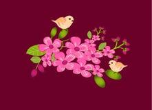 Ramos de flores cor-de-rosa Foto de Stock Royalty Free