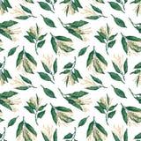 Ramos de florescência do sourwood, teste padrão sem emenda Fotografia de Stock