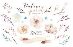 Ramos de las flores de la acuarela fijados con las plumas Impresión orgánica del diseño de la pluma del color del Watercolour Ilu ilustración del vector