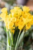 Ramos de narcisos amarillos Flores de la primavera del jardinero holandés Concepto de un florista en una floristería wallpaper fotografía de archivo libre de regalías