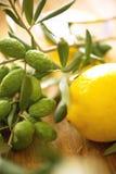 Ramos de oliveira com limão Imagem de Stock Royalty Free