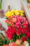 Ramos de rosas coloridas Foto de archivo libre de regalías