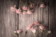 Ramos de rosas en una tabla de madera Fotos de archivo