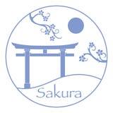 Ramos de Sakura e torii, portas rituais jap?o fotografia de stock royalty free