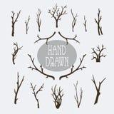 Ramos e árvores tirados mão Ilustração do Vetor