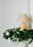 Ramos e lâmpada de árvore Foto de Stock