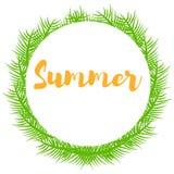 Ramos e lugar da planta verde para o verão do texto Imagem de Stock Royalty Free