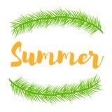 Ramos e lugar da planta verde para o verão do texto Fotografia de Stock