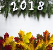 Ramos Spruce com figuras 2018 e folhas caídas do amarelo do bordo imagem de stock