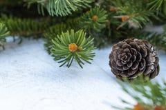 Ramos verdes de uma árvore e de cones de Natal em um fundo da placa branca Vista lateral com espa?o da c?pia imagem de stock