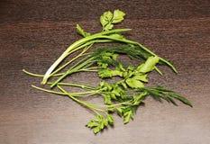 Ramos verdes do aneto, da salsa e das cebolas Fotos de Stock