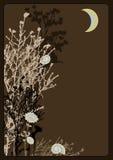 Ramoscelli alla notte royalty illustrazione gratis