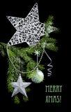 Ramoscelli decorati dell'albero di natale, isolati sul nero Immagine Stock Libera da Diritti