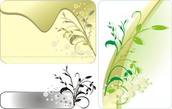Ramoscelli decorativi. Tre schede Fotografia Stock Libera da Diritti