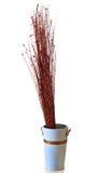 Ramoscelli ornamentali Fotografia Stock Libera da Diritti