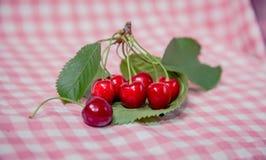 Ramoscello delle ciliege, ciliege mature Immagine Stock