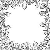 Ramowa granica, kwiecisty dekoracyjny ornament z czernią opuszcza i rozgałęzia się Fotografia Stock