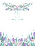 Ramowa granica, szablon pocztówka z akwarela krokusem kwitnie i gałąź, ślubny zaproszenie ilustracji