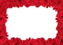 ramowa miłość Zdjęcie Royalty Free