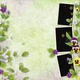 ramowa wiosna Zdjęcie Royalty Free