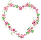 ramowe róże Fotografia Royalty Free