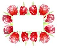 Ramowi czerwoni tulipany dla zaproszeń, etykietki, karty akwarela ilustracji
