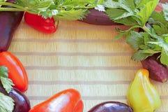 ramowi ustaleni warzywa Obraz Stock