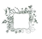 Ramowi wektorowi tło wiktoriański ptaków ptaki magnoliowi royalty ilustracja