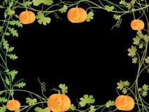 ramowy Halloween Zdjęcia Stock