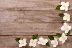 Ramowy jaśmin kwitnie na starym drewnianym tle z kopii przestrzenią dla twój teksta Odgórny widok tła karciany rysunków zaproszen Fotografia Royalty Free