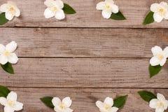 Ramowy jaśmin kwitnie na starym drewnianym tle z kopii przestrzenią dla twój teksta Odgórny widok tła karciany rysunków zaproszen Obrazy Stock