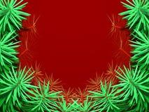 ramowy jodły drzewo Zdjęcia Royalty Free