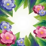 ramowy liść wiosna fiołek Zdjęcie Stock