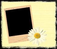 ramowy polaroid Zdjęcie Stock