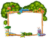 Ramowy szablon z gąsienicą i drzewem ilustracji