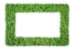 ramowy trawy zieleni ilustraci wektor Fotografia Stock