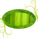 ramowy trawy zieleni jedwab Fotografia Stock