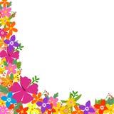 ramowy tropikalny Zdjęcie Royalty Free