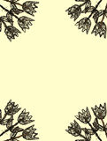 ramowy tulipanów drewna kolor żółty Fotografia Stock