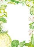 ramowy warzywo Zdjęcie Stock