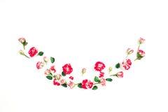 Ramowy wianek różowe róże na białym tle Zdjęcie Royalty Free