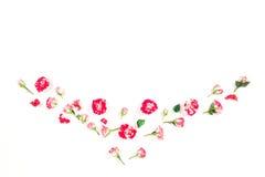 Ramowy wianek różowe róże na białym tle Zdjęcia Stock
