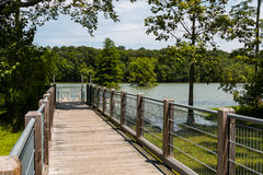 Ramp to ADA-Compliant Canoe/Kayak Launch Ramp at Stumpy Lake Royalty Free Stock Photography